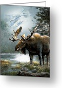 Stretched Canvas Greeting Cards - Alaska moose with floatplane Greeting Card by Gina Femrite