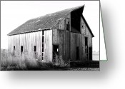 Shed Photo Greeting Cards - Albert City Barn 3 Greeting Card by Julie Hamilton