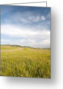Canadian Foothills Landscape Greeting Cards - Alberta Canada landscape Greeting Card by Marlene Ford