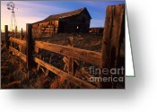 Abandoned Buildings Greeting Cards - Alberta Homestead Greeting Card by Bob Christopher