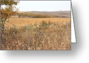 Autumn Scenes Greeting Cards - Alberta Prairie Farmland in Autumn Greeting Card by Jim Sauchyn
