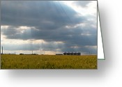 Occupy Greeting Cards - Alberta wheat field Greeting Card by Stuart Turnbull