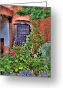 Albuquerque Greeting Cards - Albuquerque Garden Greeting Card by David Patterson