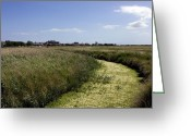 English Countryside Print Greeting Cards - Aldeburh across the marshes. Greeting Card by Darren Burroughs