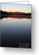 October Greeting Cards - Algonquin First Light Greeting Card by Chris Hill