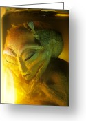 Secrecy Greeting Cards - Alien Greeting Card by Detlev Van Ravenswaay