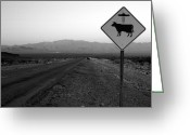 Open Range Greeting Cards - Alien Highway Greeting Card by David Lee Thompson