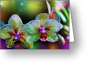Fractal Greeting Cards - Alien Orchids Greeting Card by Bill Tiepelman