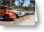 Chev Pickup Greeting Cards - All in a Row Greeting Card by James Mcinnes