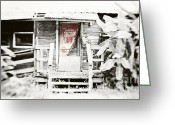 Selective Color Greeting Cards - Alligator Bayou Bar Greeting Card by Scott Pellegrin