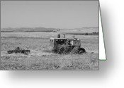 Sacramento River Greeting Cards - Allis-Chalmers Tractor Greeting Card by Troy Montemayor