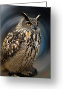 Colette Greeting Cards - Almeria Wise Owl living in Spain  Greeting Card by Colette Hera  Guggenheim
