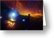 Astrophotography Greeting Cards - Alnitak Region In Orion Flame Nebula Greeting Card by Filipe Alves