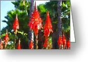 Cactus Flower Digital Art Greeting Cards - Aloe Arborescens with Palm Trees Greeting Card by Amy Vangsgard