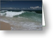Sand Beaches Greeting Cards - Aloha Hookipa Beach Ulu Wehi Greeting Card by Sharon Mau