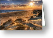 Sea Oats Greeting Cards - Alone II Greeting Card by Dan Carmichael