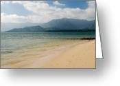Northshore Greeting Cards - Alone Greeting Card by Michael Peychich