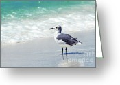 Vacation Destination Greeting Cards - Alone on the Beach Greeting Card by Thomas R Fletcher