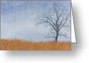 Winter Trees Greeting Cards - Alone Winter Greeting Card by Garry McMichael