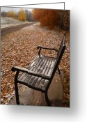 Walkways Greeting Cards - Alone With Autumn Greeting Card by Steven Milner
