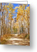 Autumn Roads Greeting Cards - Alpine Autumn Greeting Card by Kara Kincade