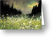 Daisies Greeting Cards - Alpine Meadow Greeting Card by Arne Hansen