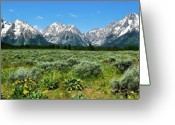Grand Tetons Greeting Cards - Alpine Meadow Teton Panorama II Greeting Card by Greg Norrell