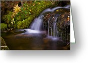 Brian Kerls Greeting Cards - Alpine Waterfall Greeting Card by Brian Kerls