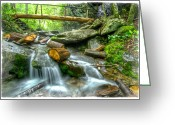 Mount Le Conte Greeting Cards - Alum Cave Bluff Trail Greeting Card by Debra and Dave Vanderlaan