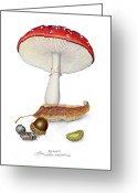 Pill Mixed Media Greeting Cards - Amanita Muscaria Greeting Card by Ev Cabrera Marinucci