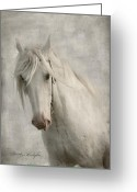 White White Horse Digital Art Greeting Cards - Amazing Grace Greeting Card by Dorota Kudyba