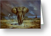Darken Greeting Cards - Amboseli Bull Elephant Greeting Card by Silvia  Duran