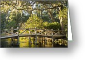 The Swamp Greeting Cards - Amelia Island Plantation, Bridge Greeting Card by Richard Nowitz