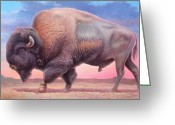 Buffalo Greeting Cards - American Buffalo Greeting Card by Hans Droog
