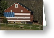 Rail Fence Greeting Cards - American Flag Painted On The Side Greeting Card by Todd Gipstein