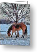 Jeff Kolker Greeting Cards - American Paint in Winter Greeting Card by Jeff Kolker
