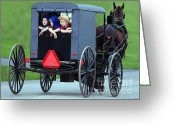Amish Greeting Cards - Amish Country Tour Greeting Card by Randy Matthews