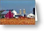 Cornfield Photo Greeting Cards - Amish Farm Greeting Card by Thomas R Fletcher