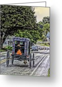 Pennsylvania Dutch Greeting Cards - Amish Girl Greeting Card by Madeline Ellis