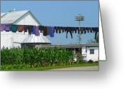 Amish Greeting Cards - Amish Laundry Greeting Card by Lori Seaman