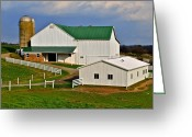 Ohio Country Greeting Cards - Amish Living Greeting Card by Robert Harmon