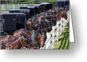 Amish Greeting Cards - Amish Parking Lot Greeting Card by Tom Mc Nemar