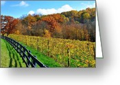 Ohio Country Greeting Cards - Amish Vinyard Two Greeting Card by Robert Harmon