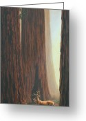 Redwood Greeting Cards - Among the Giants Greeting Card by Crista Forest