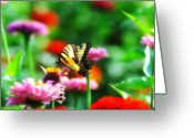 Pollinate Greeting Cards - Amongst the Flowers Greeting Card by Bill Cannon