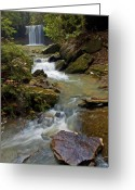 Daniel Greeting Cards - Amos Falls Kentucky Greeting Card by Ulrich Burkhalter