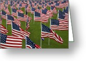United We Stand Greeting Cards - An Abundance Of American Flags Greeting Card by Stocktrek Images