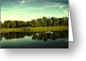 Puffy Greeting Cards - An Evening at Broemmelsiek Park Greeting Card by Bill Tiepelman