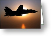 Fighter Jets Greeting Cards - An F-14d Tomcat In Flight Greeting Card by Stocktrek Images