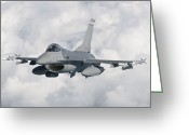 Airplane Greeting Cards - An F-16 From The Colorado Air National Greeting Card by Giovanni Colla